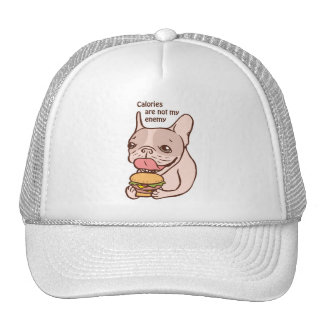 Calories are not my Enemy Trucker Hat