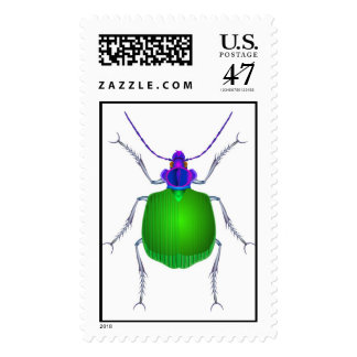 calosoma stamp