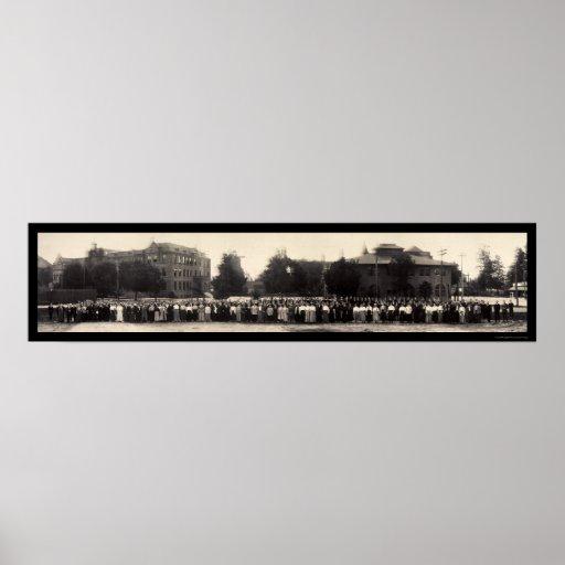 Caltech Throop Pasadena Photo 1908 Print