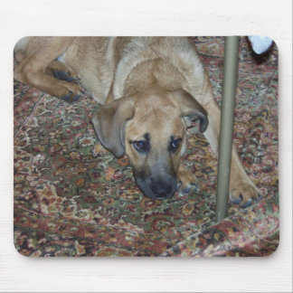 calvin puppy mousepad