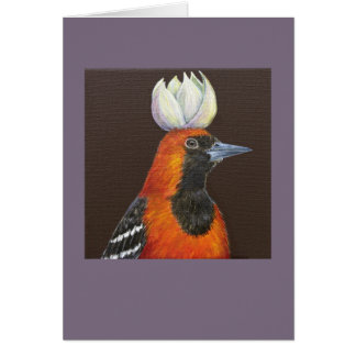 Calvin the hooded oriole card