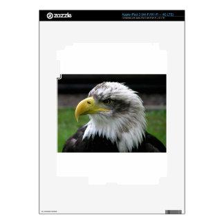 calvo-Eagle iPad 3 Skin