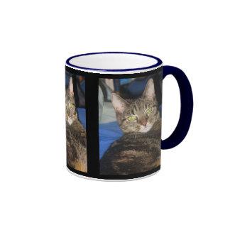 Calypso Kitty Sass Mug