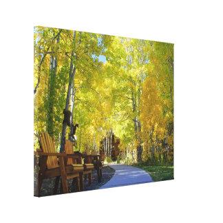 """""""Calzada de Aspen"""", lona, visión de tierra, otoño, Impresiones En Lona Estiradas"""