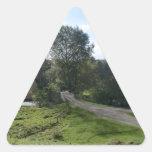 Calzada de Haddon Pasillo Pegatina Trianguladas Personalizadas