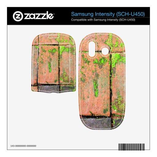 Calzada de los ladrillos samsung intensity II skin