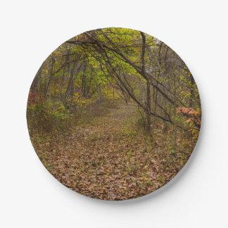 Calzada del otoño plato de papel de 7 pulgadas