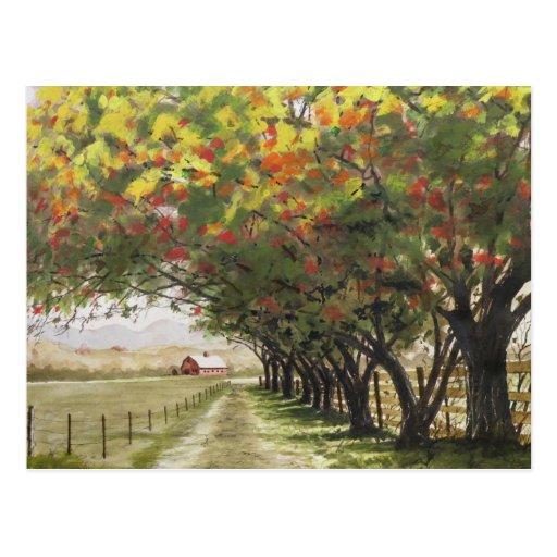 Calzada del otoño postales