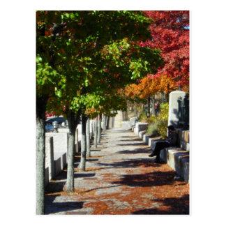 Calzada del otoño postal