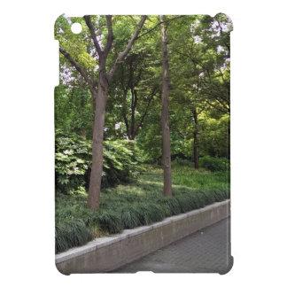 Calzada del parque