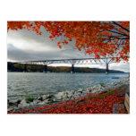 Calzada en otoño tarjeta postal