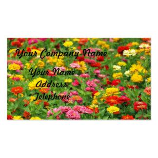 Cama de flor colorida de la maravilla tarjetas de visita