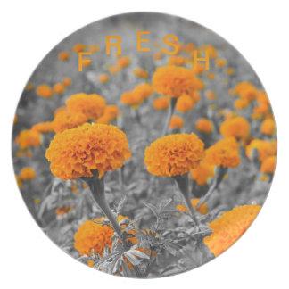 Cama de flor de la maravilla en la placa platos de comidas