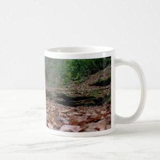 Cama de río seca taza de café