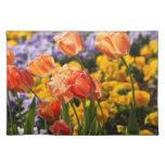 cama de tulipán mantel individual