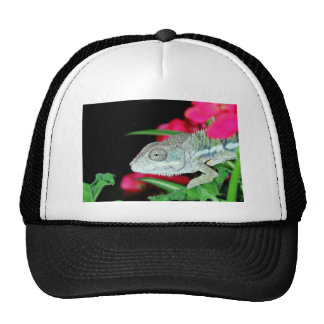 camaleón de la pantera gorra