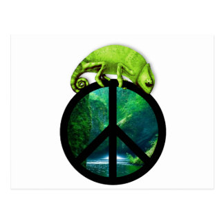 camaleón de la paz postales