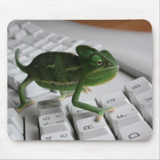Camaleón en el teclado tapete de ratón