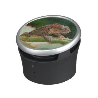Camaleón enano (Brookesia Exarmata), bahía de Altavoz Bluetooth