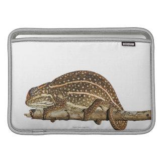 Camaleón Jewelled, el camaleón de Campan Funda MacBook