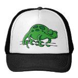 Camaleón lindo gorras