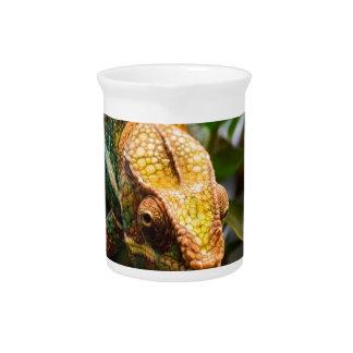 Camaleón que se presenta jarras para bebida