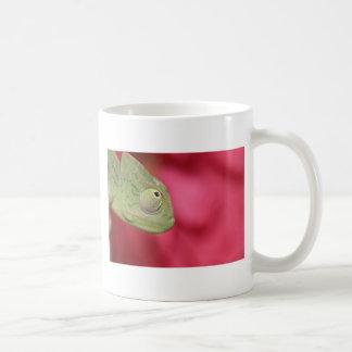 camaleón tazas de café