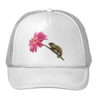 Camaleón verde en la flor rosada gorras de camionero