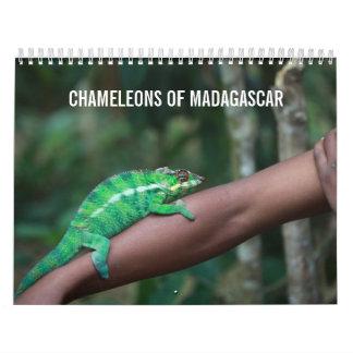 Camaleones del calendario de Madagascar