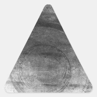 Cámara apenada gris soñador retro de la foto del pegatina triangular