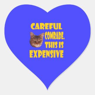 Camarada cuidadoso. Esto es costoso Pegatina En Forma De Corazón