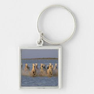 Camargue Horse (Equus caballus) Keychain