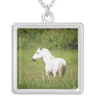 Camargue Horse in the Alpes Cote d Azur of the Personalized Necklace
