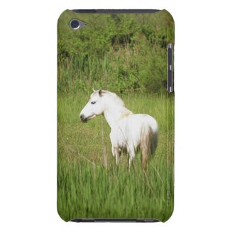 Camargue Horse in the Alpes Cote d'Azur of the Barely There iPod Case