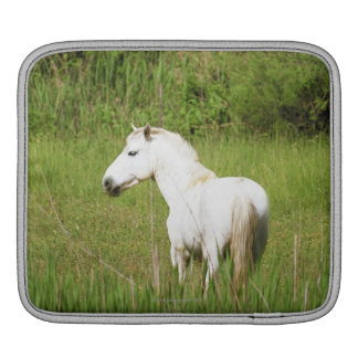 Camargue Horse in the Alpes Cote d'Azur of the iPad Sleeve
