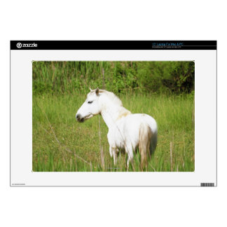 Camargue Horse in the Alpes Cote d'Azur of the Laptop Decals