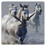 Camargue horses running on marshland to cross square wall clock