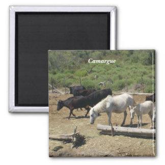 Camargue - imán para frigorifico