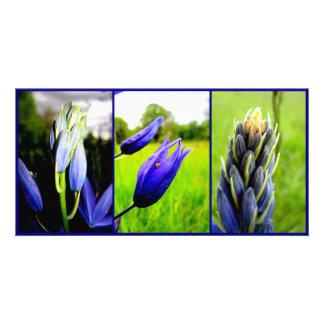 Camas Collage Photocard Card