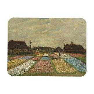 Camas de flor de Van Gogh en Holanda Imán Rectangular