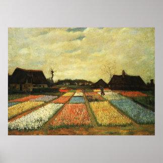 Camas de flor en Holanda Póster