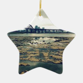 Camas del fósil del río Ohio Adorno Navideño De Cerámica En Forma De Estrella