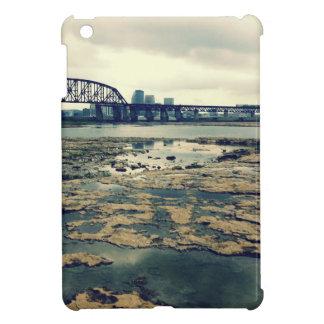 Camas del fósil del río Ohio
