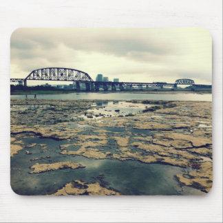 Camas del fósil del río Ohio Mouse Pads