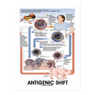 Cambio antigénico (transmisión del virus) tarjetas postales