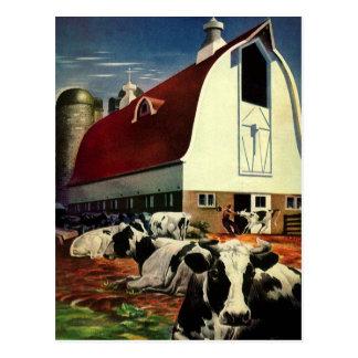 Cambio de dirección, vacas del vintage de la granj postal