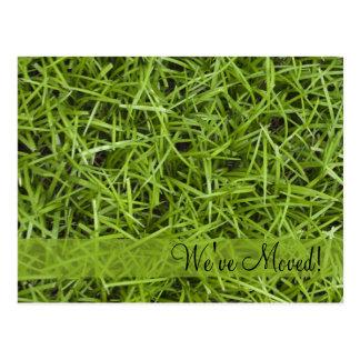 Cambio de hierba verde de postal de la dirección