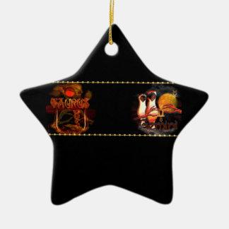 Cambio de signo de la astrología del zodiaco de lo ornamento de navidad