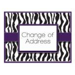 Cambio púrpura del estampado de zebra de postales