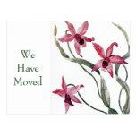 Cambio rosado de la orquídea del vintage de postal